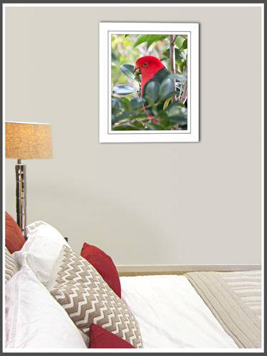 canvas-wall-art-king-parrot